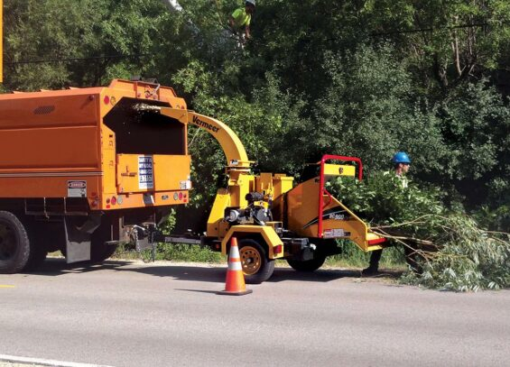 Commercial Tree Services-Hallandale Beach FL Tree Trimming and Stump Grinding Services-We Offer Tree Trimming Services, Tree Removal, Tree Pruning, Tree Cutting, Residential and Commercial Tree Trimming Services, Storm Damage, Emergency Tree Removal, Land Clearing, Tree Companies, Tree Care Service, Stump Grinding, and we're the Best Tree Trimming Company Near You Guaranteed!