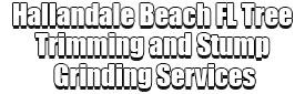 Hallandale Beach FL Tree Trimming and Stump Grinding Services Logo-We Offer Tree Trimming Services, Tree Removal, Tree Pruning, Tree Cutting, Residential and Commercial Tree Trimming Services, Storm Damage, Emergency Tree Removal, Land Clearing, Tree Companies, Tree Care Service, Stump Grinding, and we're the Best Tree Trimming Company Near You Guaranteed!